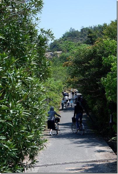 大久野島の急な上り坂