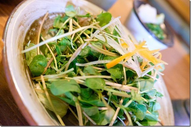 三瀬木漏れ日のそばの芽のサラダ