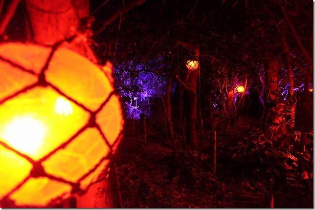 伊王島アイランドルミナ、幻想的な迷路