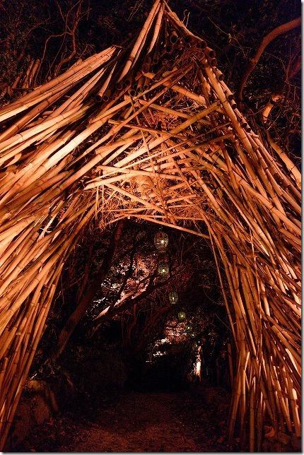 伊王島アイランドルミナ、入り口、大木