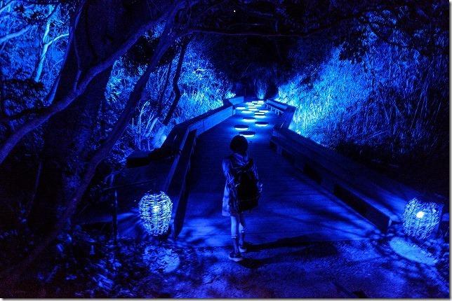 伊王島アイランドルミナ、光の道