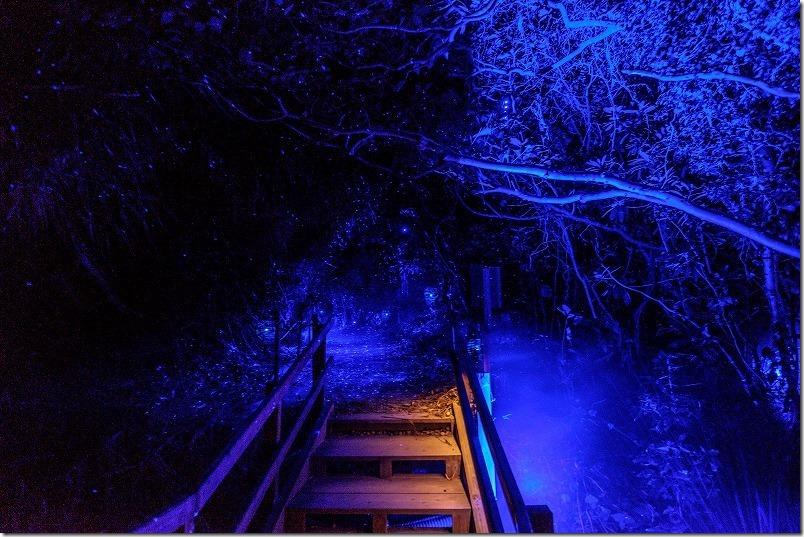 伊王島アイランドルミナ、光の洞窟と階段