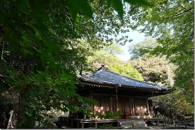 富貴寺、大堂の紅葉は11月中旬はまだ