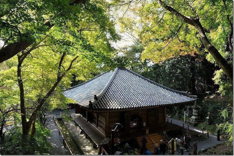 富貴寺、大堂の少し紅葉11月中旬