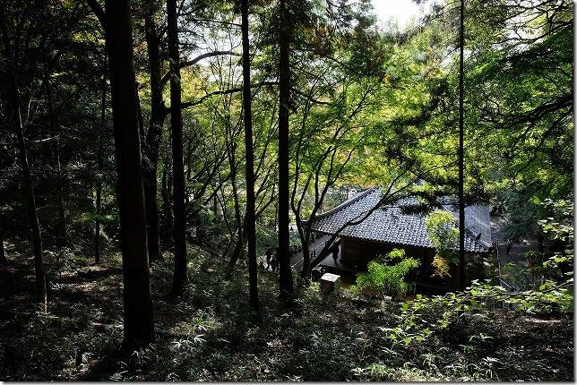 富貴寺、大堂を裏側から