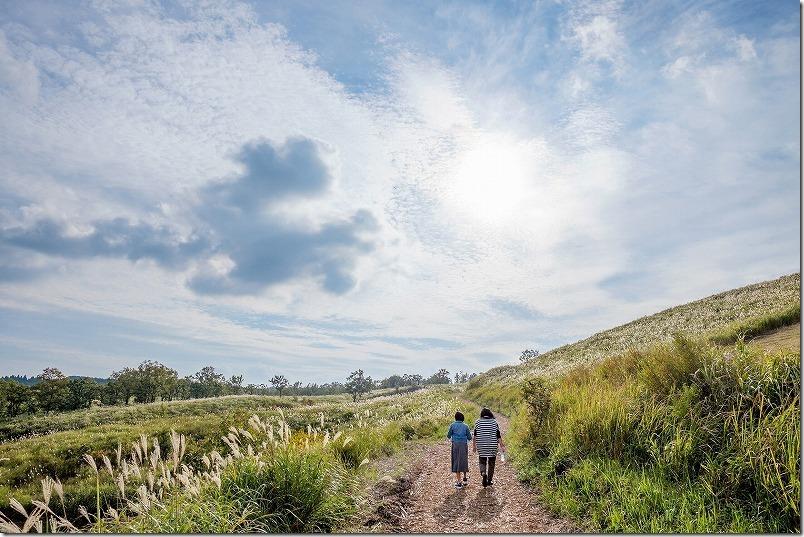 押戸石の丘の遊歩道・散策