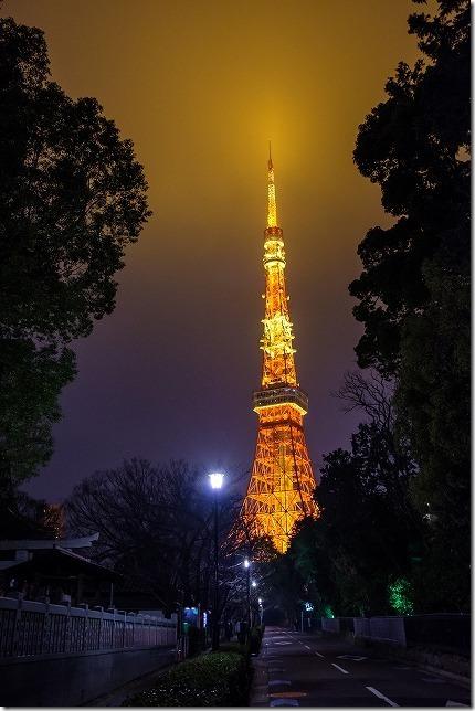 増上寺の横の通りと東京タワーの夜景