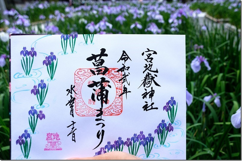宮地嶽神社の期間限定の御朱印(菖蒲祭り)
