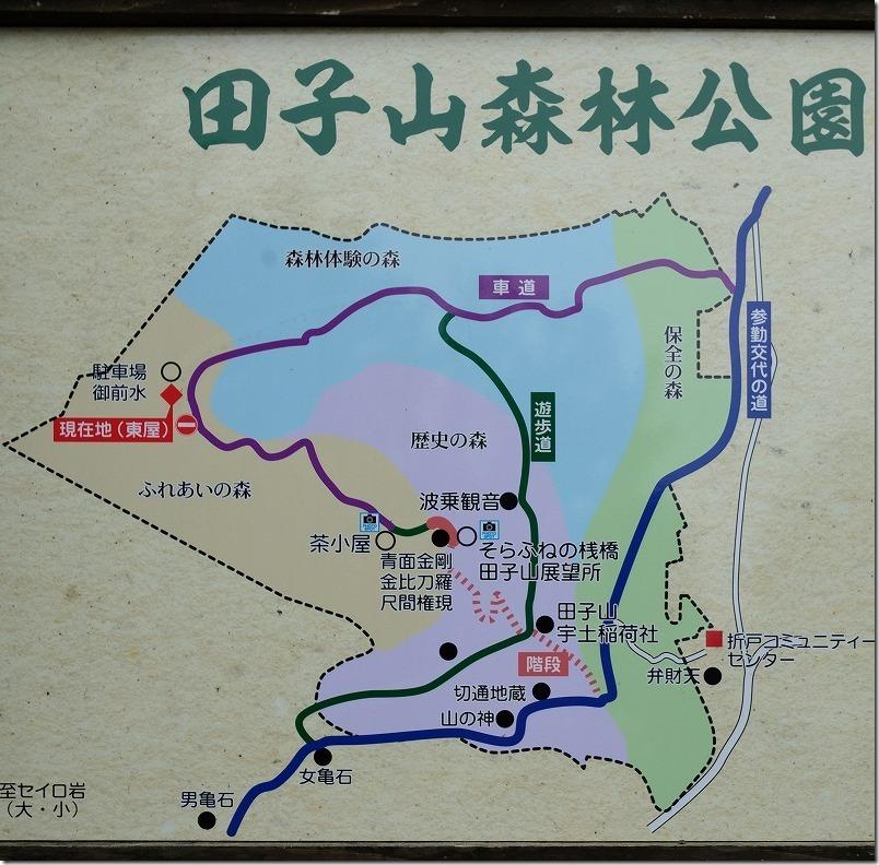 田子山展望台までの車道や登山道の地図