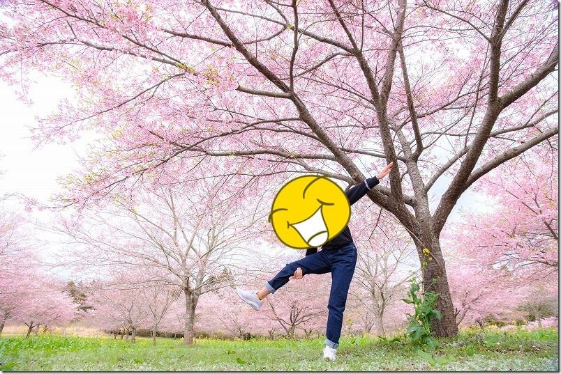 長湯温泉、枝垂れ桜の里の桜林で記念撮影
