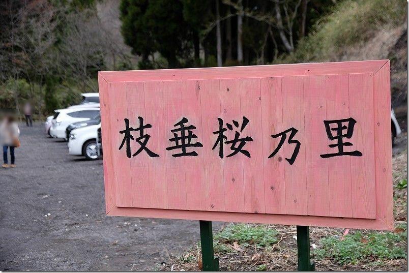 長湯温泉、枝垂れ桜の里の駐車場
