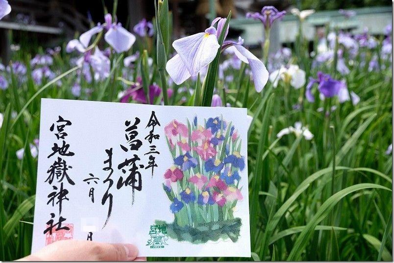 菖蒲祭りの宮地嶽神社の御朱印・期間限定