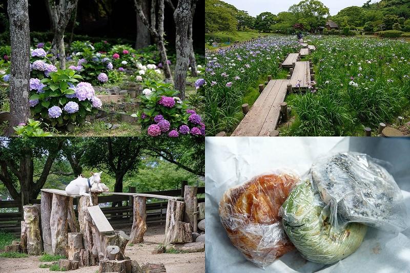 宮地嶽神社の動物園、菖蒲園