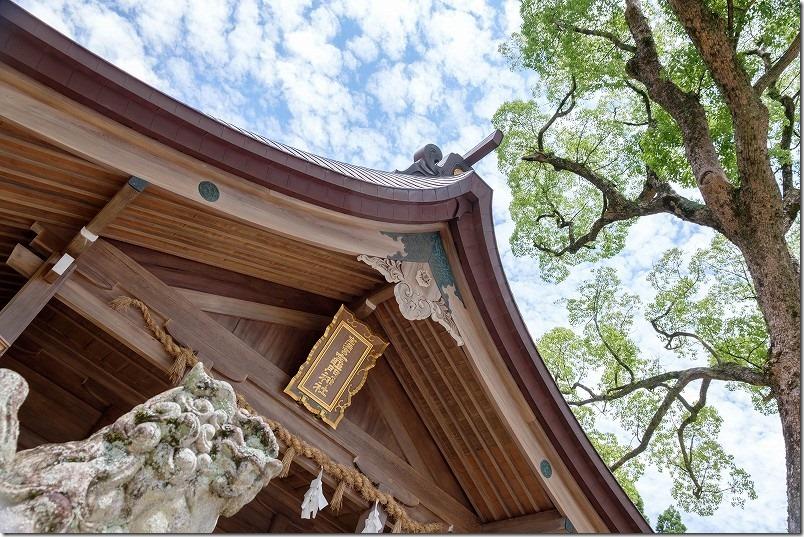 宝満宮・竈門神社の本殿、青空
