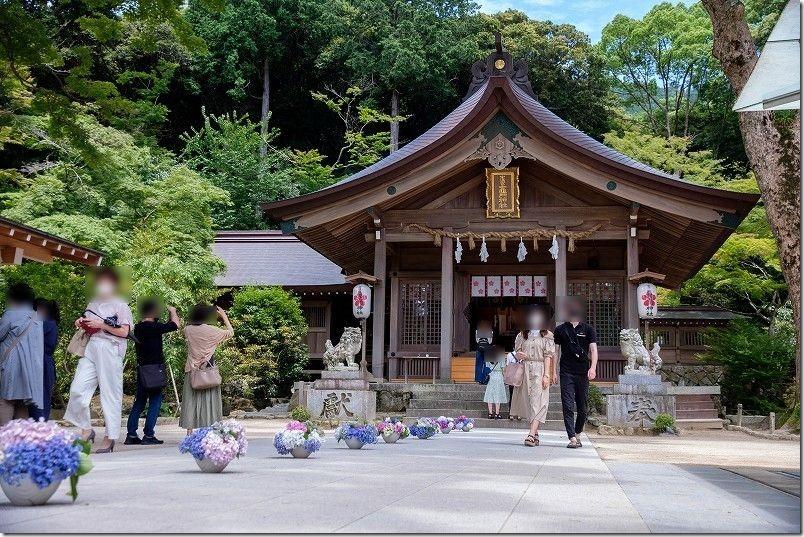 宝満宮・竈門神社の本殿・人出