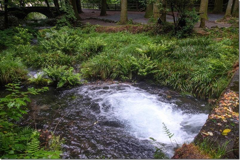 阿蘇・くじゅうの湧水、池山水源