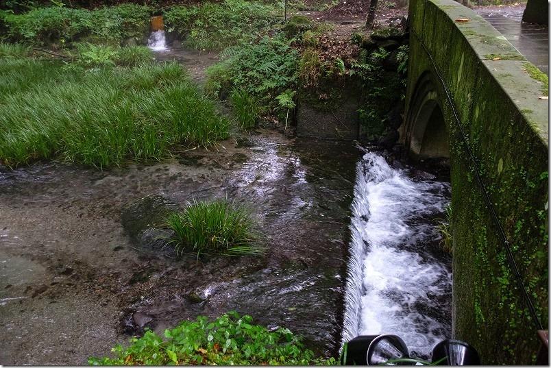 阿蘇・くじゅう、池山水源の湧水が川に