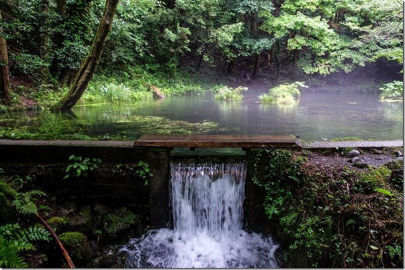 山吹水源の湧水、阿蘇、くじゅう