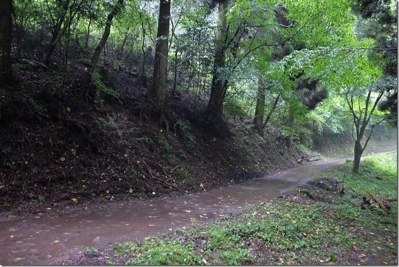 山吹水源への散策路